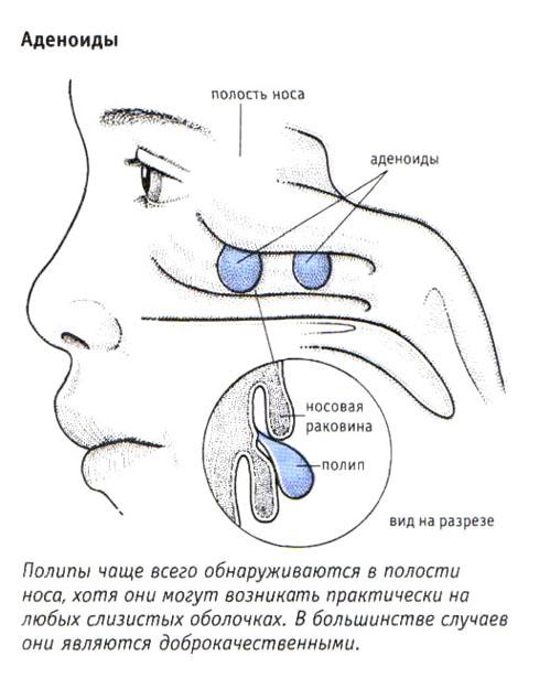 эндокринолог диетолог абакан